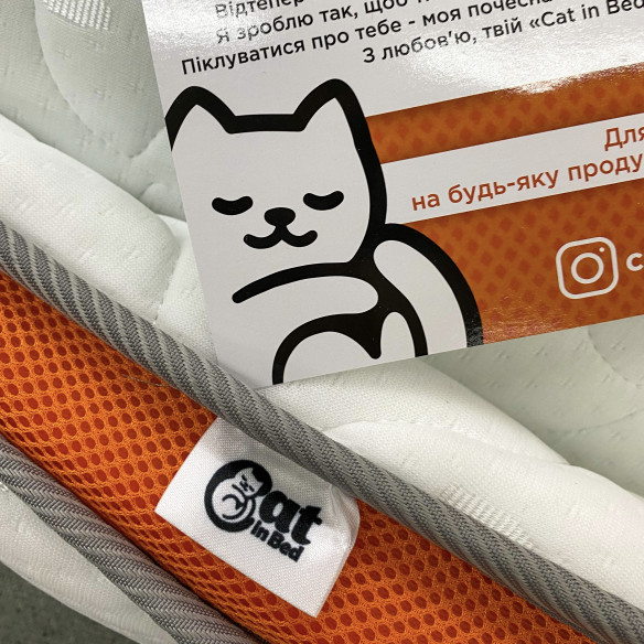 Cat in Bed MEMORY
