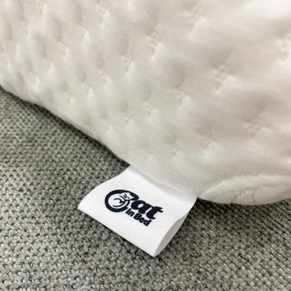 Cat in Bed BEAUTY